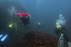 Açor-Diving-3
