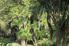 Jardim-do-Palácio-de-SantAna-5