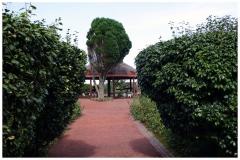 Ponta-da-Madrugada1