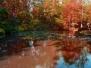 Terra Nostra-Outono