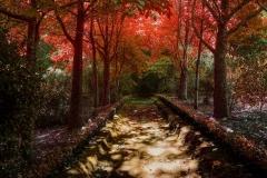 Terra Nostra Outono