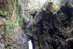Trilho-Ribeira-do-Faial-da-Terra-13