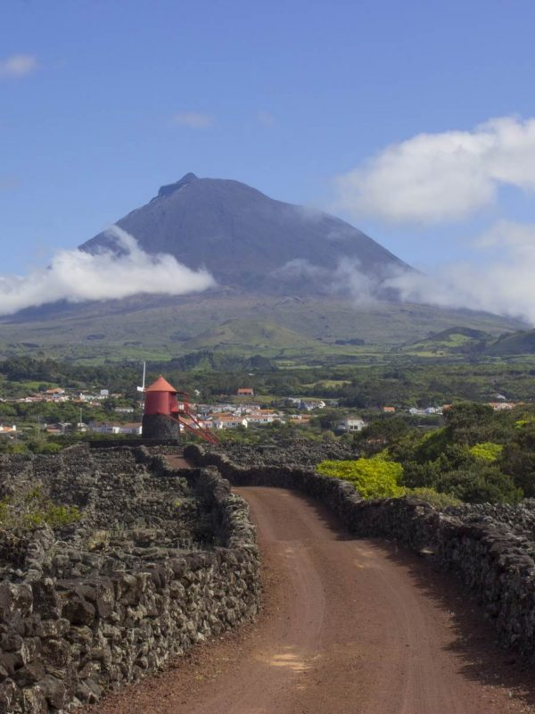 Madalena do Pico